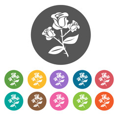 Rose icon. Flower icon set. Round  colourful 12 buttons. Vector