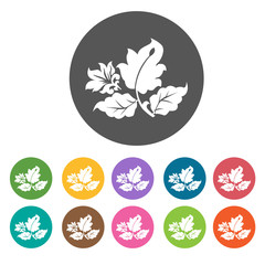 Random flower leaves icon. Flower icon set. Round  colourful 12