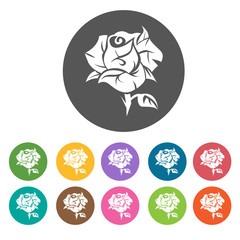Bloomed rose icon. Flower icon set. Round  colourful 12 buttons.