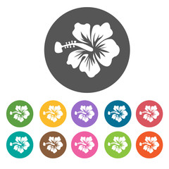 Hibiscus icon. Flower icon set. Round  colourful 12 buttons. Vec