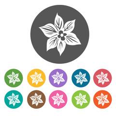 Azalea icon. Flower icon set. Round  colourful 12 buttons. Vecto