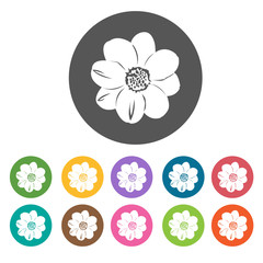 Crocus icon. Flower icon set. Round  colourful 12 buttons. Vecto