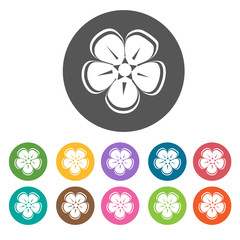 Cherry Blossoms icon. Flower icon set. Round  colourful 12 butto