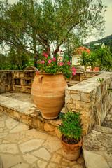 Глиняный горшок с цветами на фоне оливкового дерева