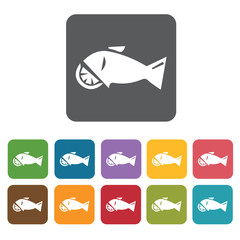 Fish icon. Attraction of japanese icon set. Rectangle colourful