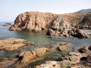 capo pecora Sardegna