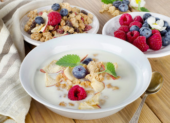 Bowl of muesli and yogurt with  berries