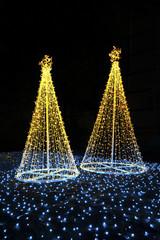 LED Christmas tree at night