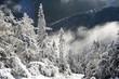 Winter in mountains. Winter on a hillside