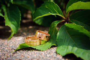 Wedding rings and leaves of grapes