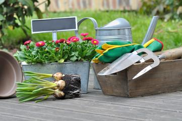 plantation fleurs, bulbes, et accessoires