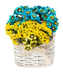 blue and yellow flowers in wooden pot isolated on the white back