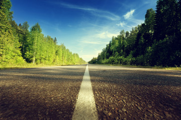 road in deep forest