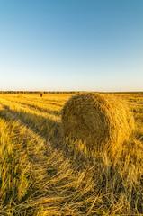 копна сена в поле
