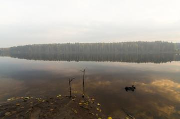 место для утренней рыбалки на пруду
