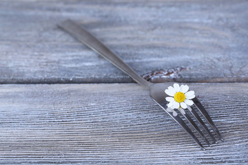 Fork with daisy flower, on wooden background