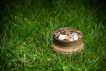 pot with golden coins, Saint Patrick's Day concept