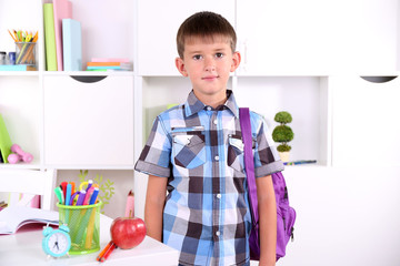 Schoolboy in classroom
