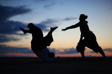Silhouettes of martial arts practitioners