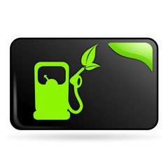 carburant naturel sur bouton web rectangle vert