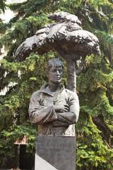 Есенин Сергей. Памятник. Город Черкесск