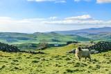 Beautiful yorkshire dales landscape stunning scenery england uk