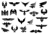 Heraldic eagles, falcons and hawks set