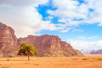 The Valley of the Moon in Wadi Rum, Jordan.