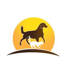 Cat ,dog and sun icon logo design
