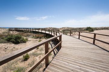 Wooden walkway over dunes, Elche, Spain