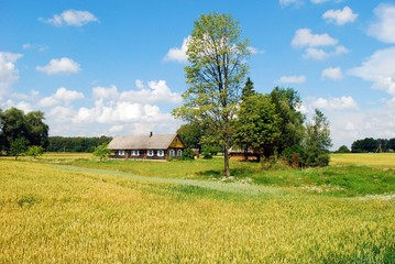 Old house in lithuanian village