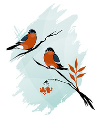 Outline Winter Birds on Branches Ink on Watercolor Style