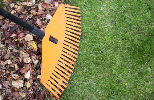 Rake and leaves - 70828360