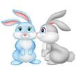 Cute rabbit kissing