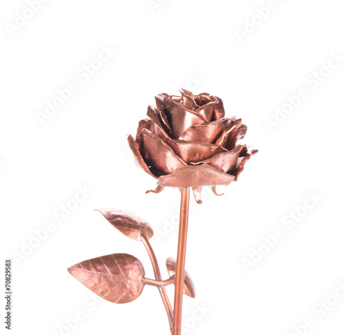 Beautiful bronze rose. - 70829583
