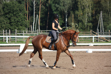 Beautiful brunette woman riding (trotting) chestnut horse