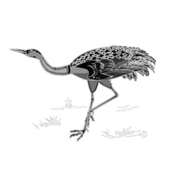 Dancing crane wildlife bird engraving vintage vector