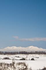 冠雪した大雪山