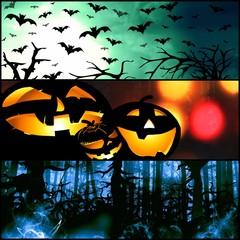 halloween horizontal symbols - pumpkin bats forest background