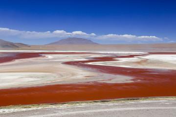 Südamerika, Bolivien, Atacama-Wüste, Altiplano, Laguna Colorada