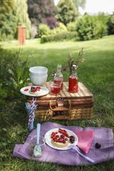 Picknick im Park mit Beeren-Kuchen und frischen Getränken