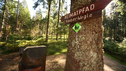 Wald in Deutschland - Schwarzwald
