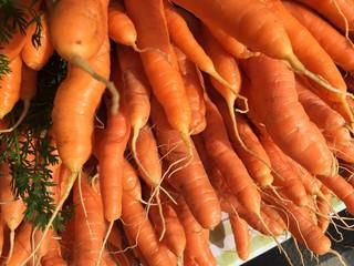 Karotten auf dem Markt