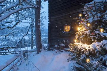 Österreich, Salzburger Land, Altenmarkt-Zauchensee, Fassade einer Holzhütte mit Weihnachtsbaum