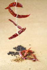 hanging red chili with spice