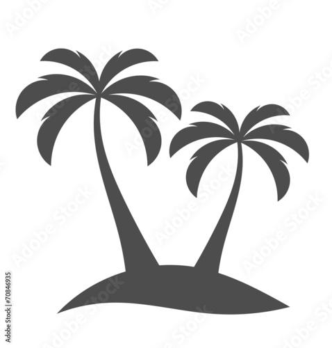 Palm trees on island - 70846935