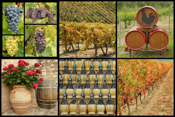 tuscan wine collage