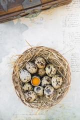 Nest mit Wachteleiern auf Papier mit Handschrift und Holztruhe