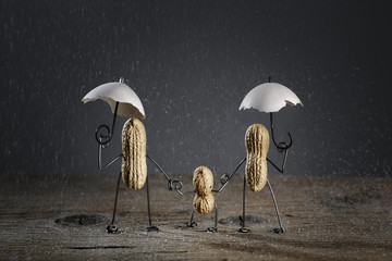 Erdnuss-Familie im Salzkörner-Regen