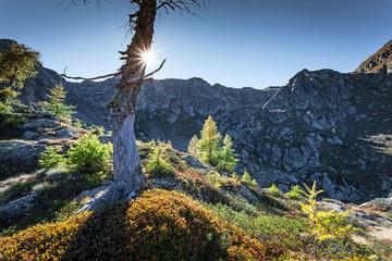 luci e ombre in alta montagna